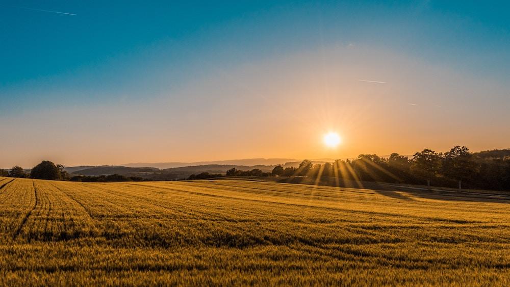 Selling Farmland | Sell My Land